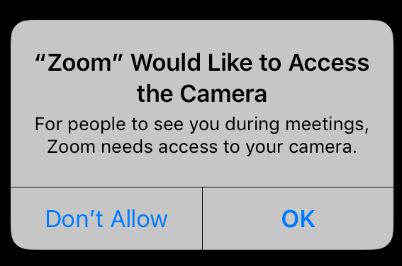 Zoom Would Like to Access the Camera - For people to see you during meetings, Zoom needs access to your camera